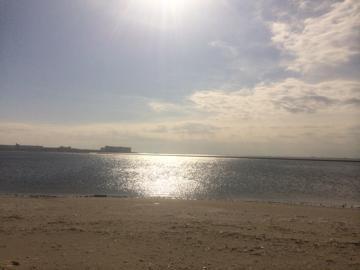 ☆ふなばし三番瀬海浜公園で心地よくBBQ☆