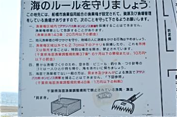 ☆ふなばし三番瀬海浜公園 潮干狩りのお知らせ☆