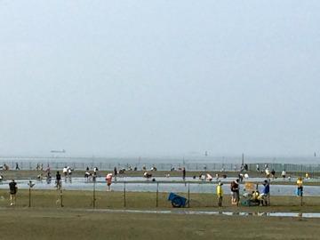☆今週の潮干狩り開催日程☆