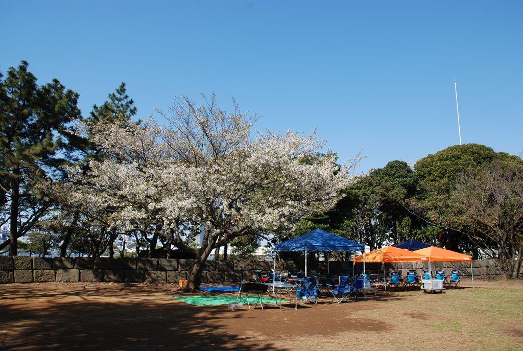 晴海ふ頭公園 バーベキューレンタル