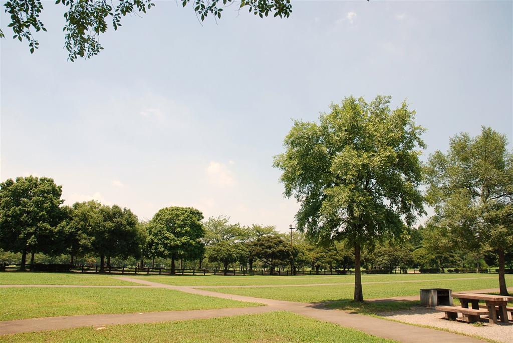 みさと公園 バーベキュー